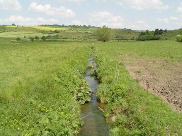 Wasserführender kleiner Graben mit angrenzenden Weideflächen