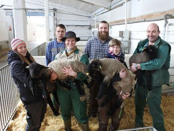 Lehrgang Schafhaltung