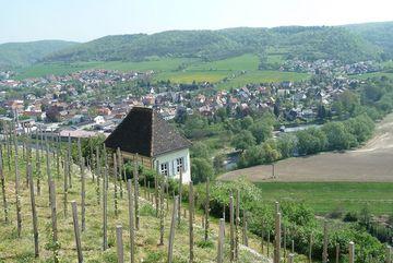 Blick auf Dorndorf im Saaletal