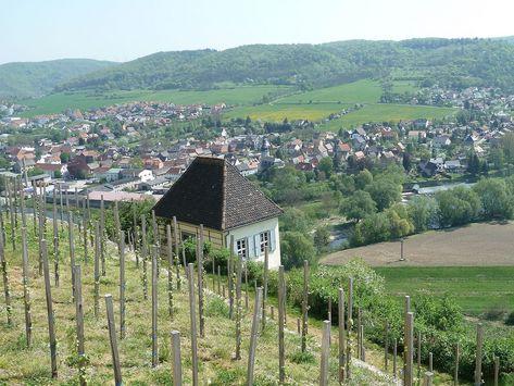 Blick von den Dornburger Schlössern auf das Saaletal