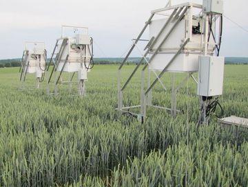 Treibhausgasmessanlage in einem Weizenfeld am Lysimeter bei Buttelstedt
