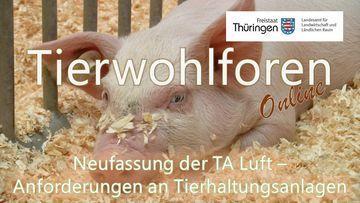 """Foto eines Ferkels überlagert vom Schriftzügen """"Tierwohlforen-Online"""" und """"Neufassung der TA Luft – Anforderungen an Tierhaltungsanlagen"""""""