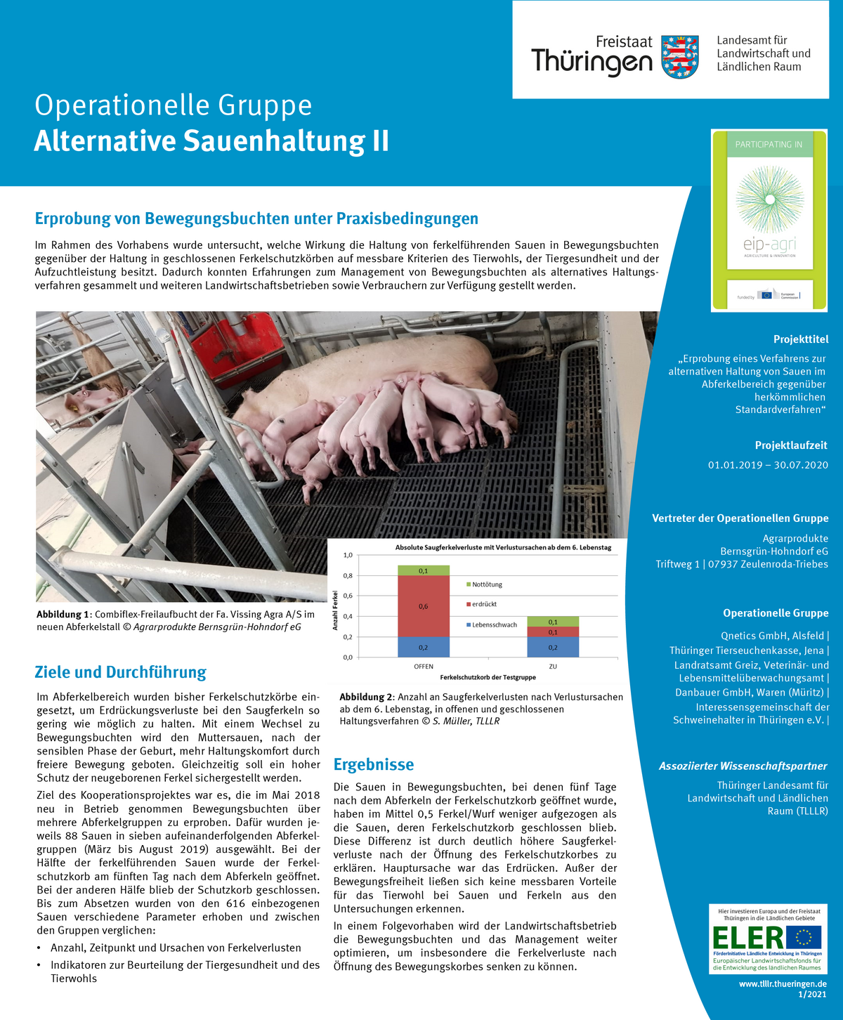 zum Poster des LFE-Projektes (PDF)