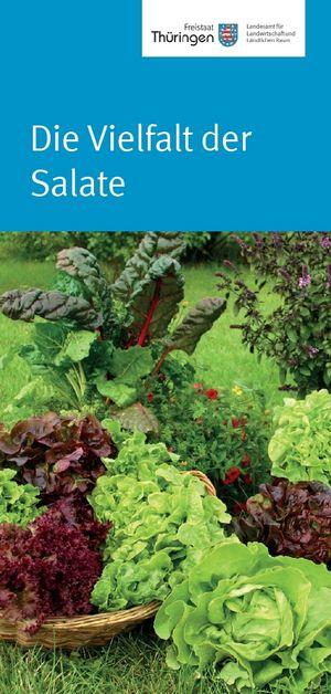 Flyer zur Vielfalt der Salate