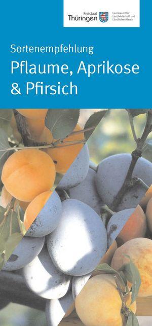 Flyer zu Aprikosen, Pfisichen und Pflaumen