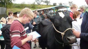 Übung Tierbeurteilung