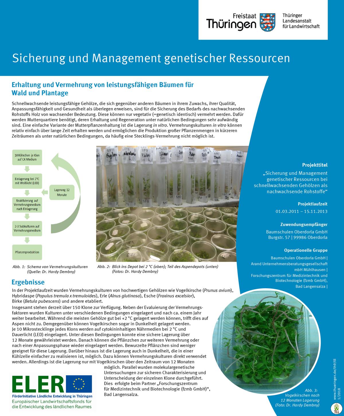 LFE-Projekt Poster genetische Ressourcen