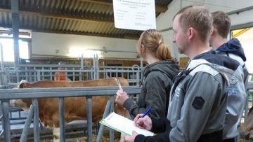 Tierwirtschaftsmeister