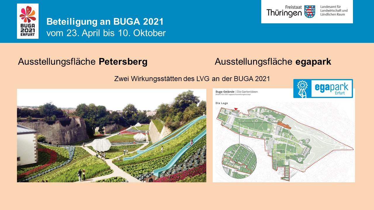 Ausstellungsbereiche des LVG, ega und Petersberg