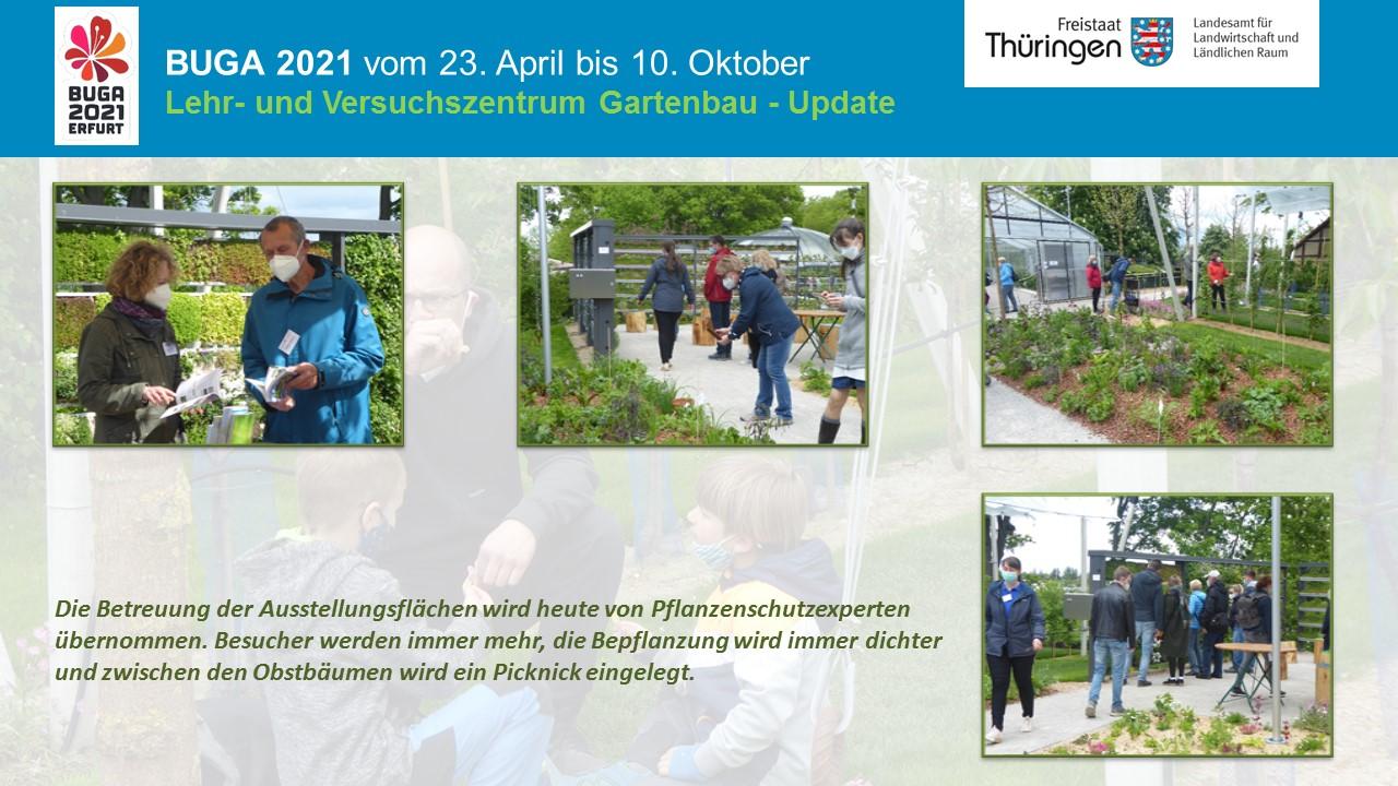 Besucher und Mitarbeiter im Ausstellungsgarten des LVG auf der Buga - Situationsbilder vom Verlauf im Juni