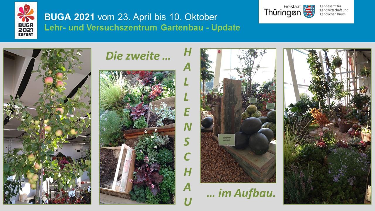 Zierpflanzen und Früchte für den Aufbau Hallenschau