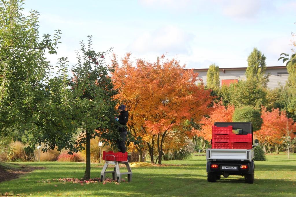 LVG Gelände mit Obstbäumen