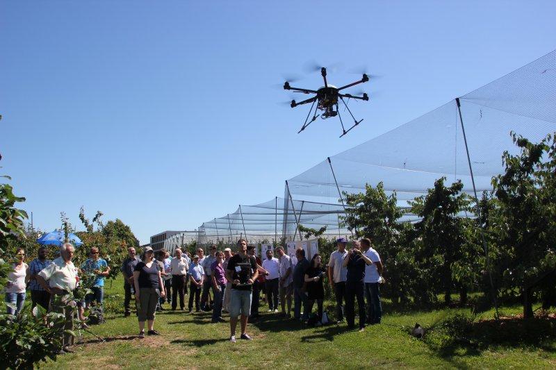 Drohne bei Überfliegen einer Kirschanlage