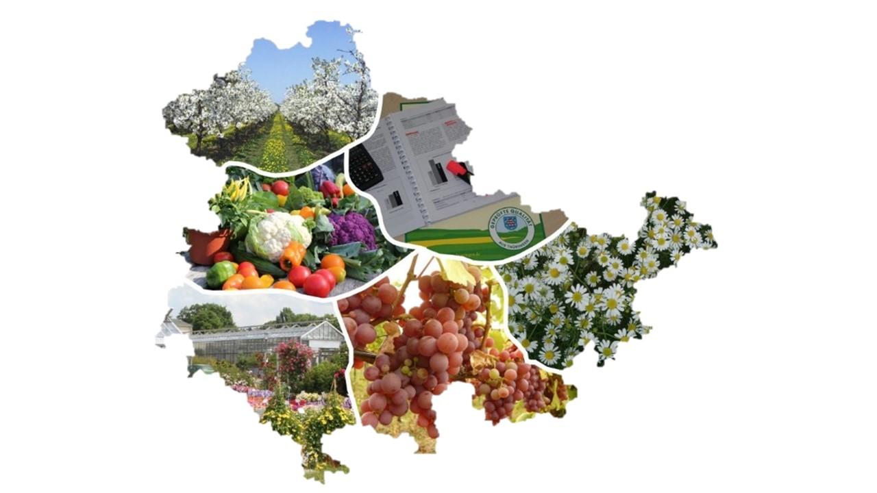 Thüringenkarte mit Bildern von gartenbaulichen Fachbereichen