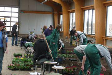 Gartenbauazubis in der Ausbildungshalle beim Pflanzen